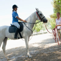 High Beech Riding School – Flat Horse Riding Lessons