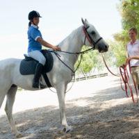 High Beech Riding School – Flat Horse Riding Lessons