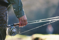 Choosing The Best Fly Fishing Rod